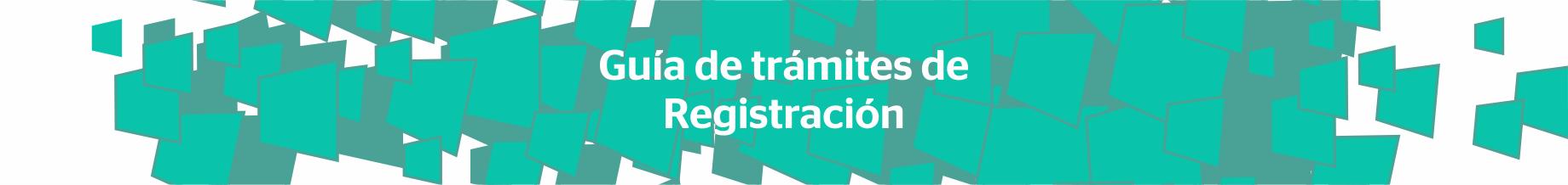 Guía de Trámites de Registración