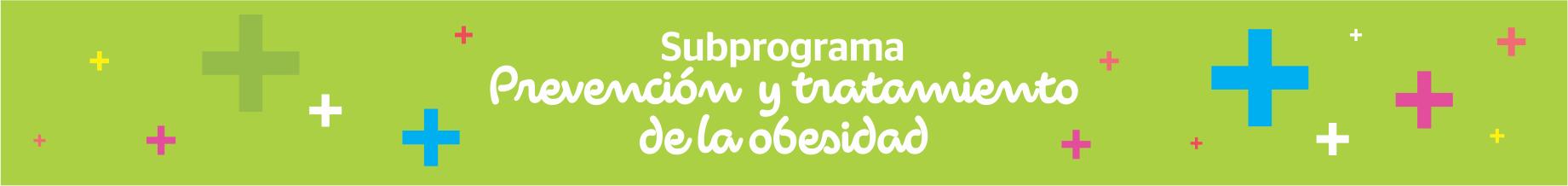 Subprograma – Prevención y Tratamiento de Obesidad