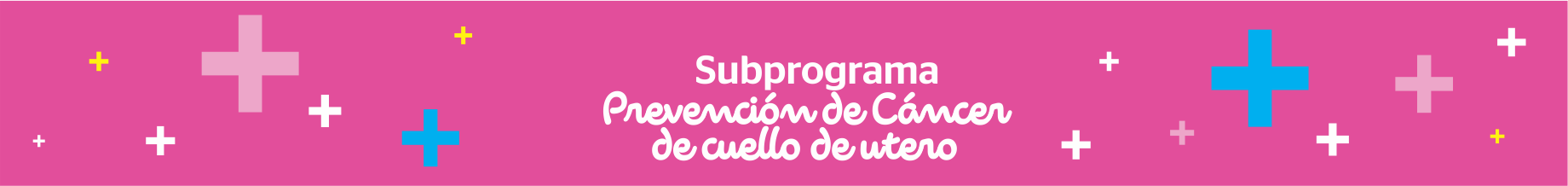 Subprograma – Prevención de cáncer de cuello de útero