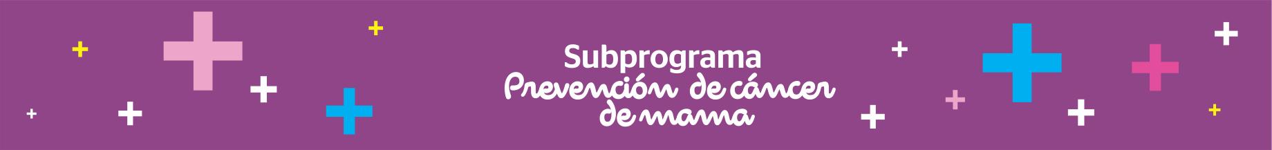 Subprograma – Prevención de cáncer de mama